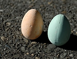 buyolympia.com: Marc Vidal - Chalk Eggs :  sidewalk chalk eggs chalk fun